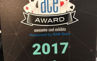 ACE Best of Show Exhibit Nomination Award