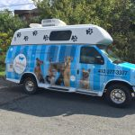 Mobile Pet Spa Van Graphics